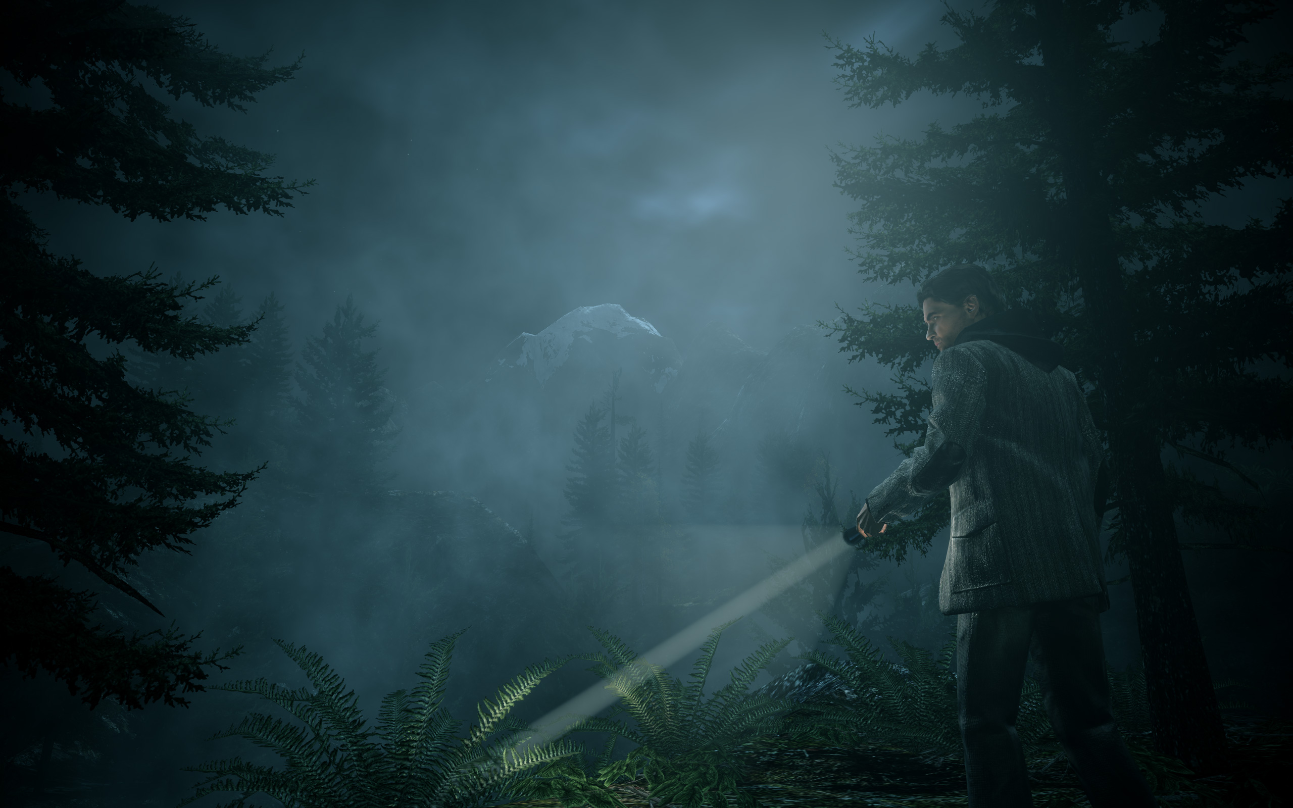Alan Wake PC Searching
