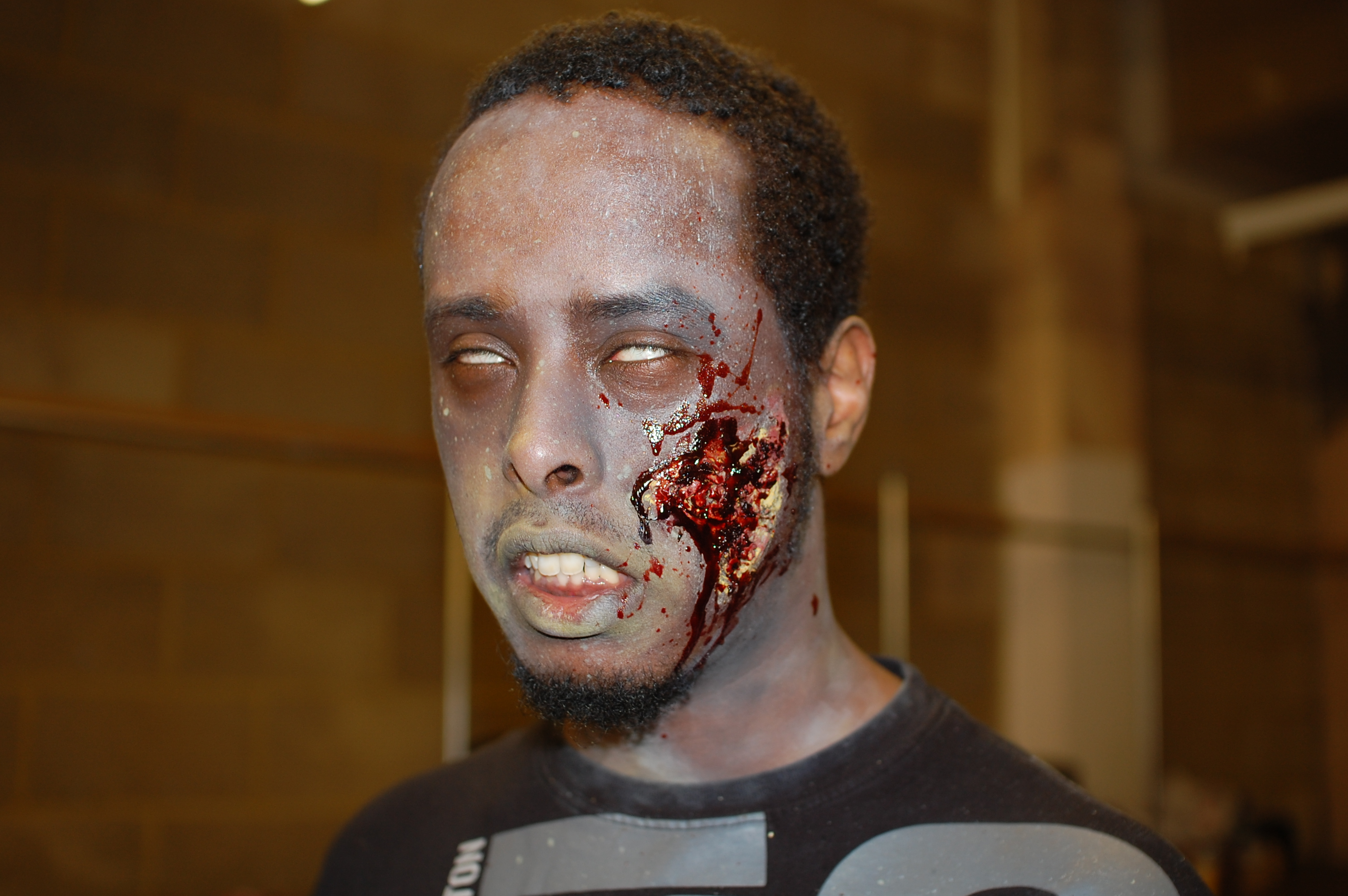 Resi 6 Zombie Shoot - Liban