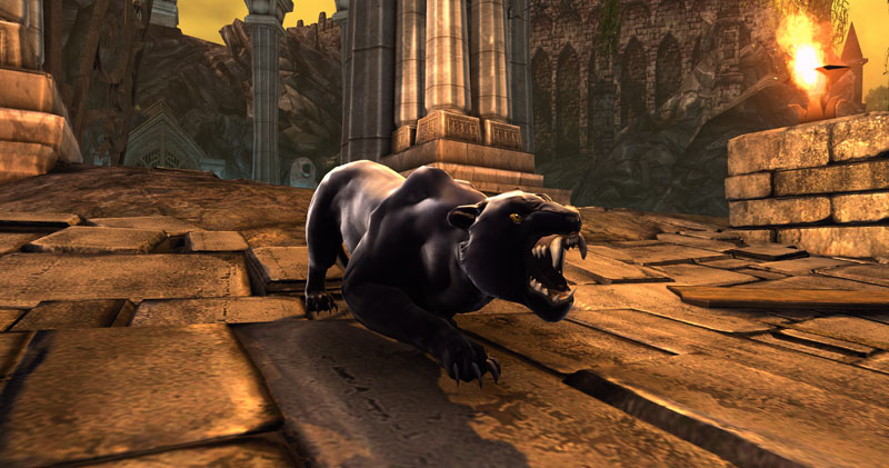 Neverwinter Panther