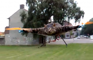 Orvillecopter quadrocopter cat