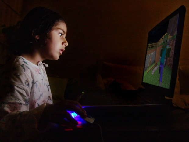 Girl Computer Stock Photo Minecraft